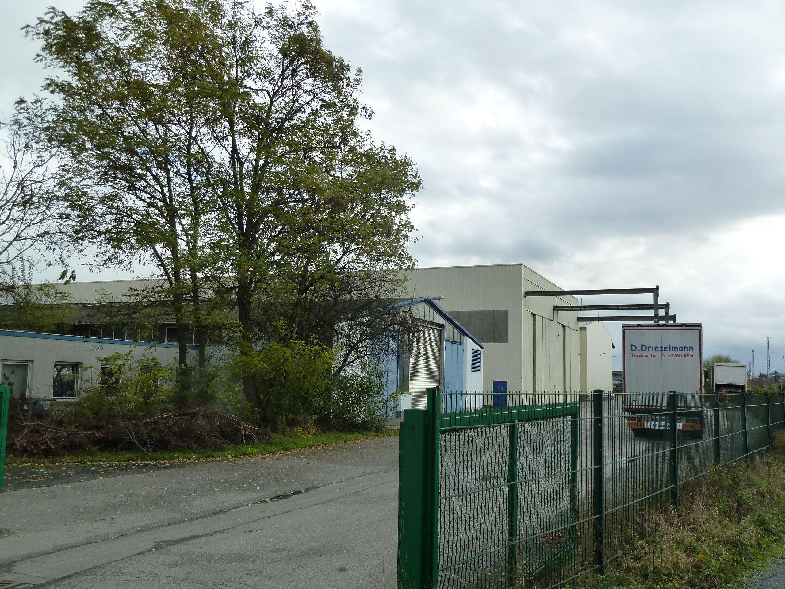 Vielfältig nutz- und vermietbares Gewerbegrundstück in Biebesheim am Rhein (Quelle: Angermann)